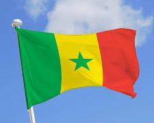 Drapeau-Sénégal - revue de presse