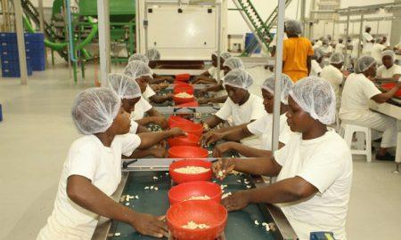 emplois-secteur-privé-Usine Engrenage