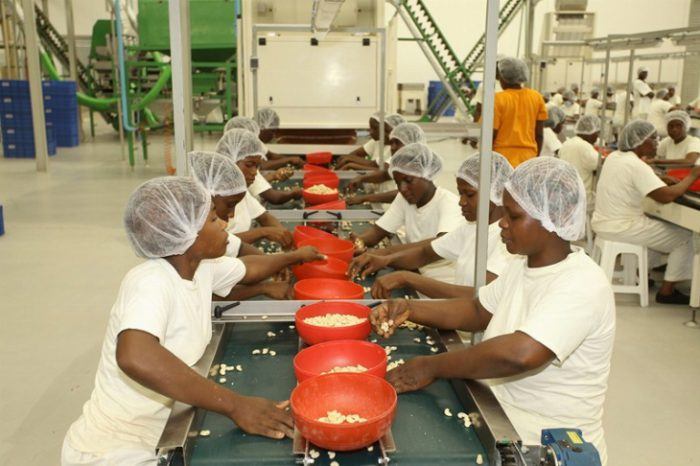 """Résultat de recherche d'images pour """"ivory coast, abidjan, cocoa industries,"""""""