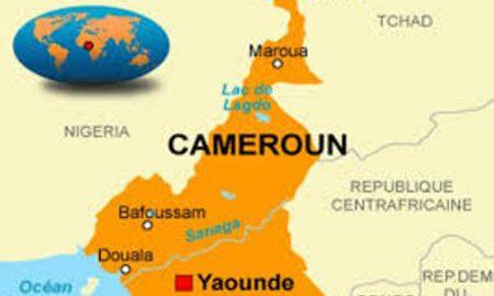 Cameroun - ELECAM - politique- santé - sport - tourisme - transport - économie - technologies