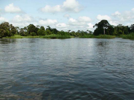 Kafiné - Niakaramandougou - marigot - fleuve - eau - environnement