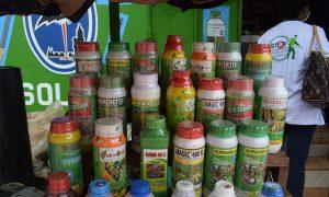 Pesticides - agriculture - economie - environnement - PROGEP-CI
