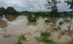 SOLIBRA - Bouaflé - fleuve Bandama - Zuénoula - pluies - inondations