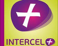 Guinée - INTERCEL+ - télécommunications