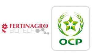 Maroc - Fertinagro - Groupe OCP - économie - agriculture