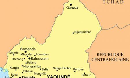 choléra - Cameroun - épidemie