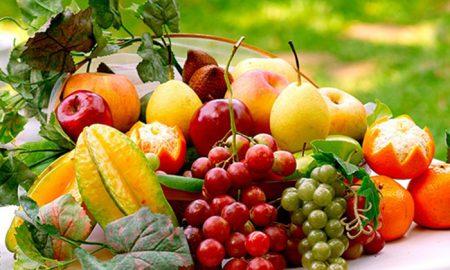 produits bio - repas - cancer - santé