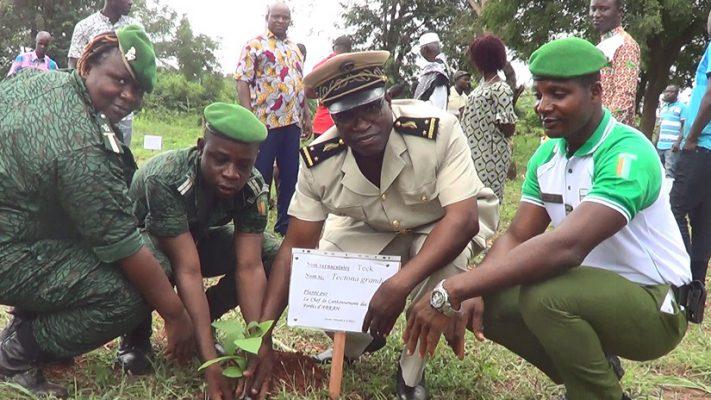 Arrah-planting-environnement