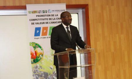Conseil-coton-anacarde-Souleymane-Diarrasouba-agriculture-PPCA