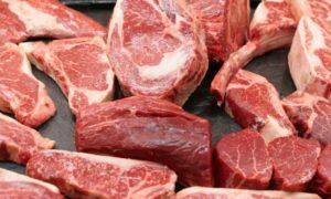viande-boeuf-animales-alimentation