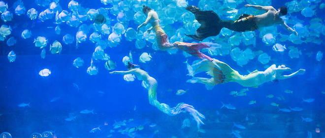 En Chine, la mode de la plongée habillé en sirène